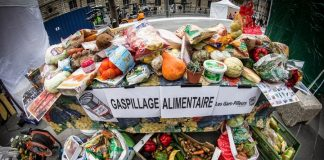 Gaspillage alimentaire, application Too Good To Go