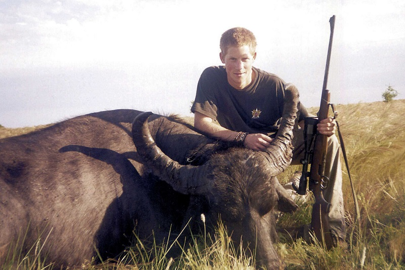 Prince Harry chasse